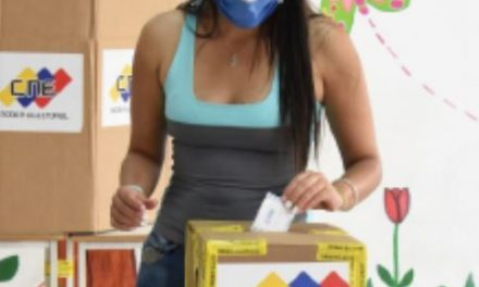 Report back from 2020 Parliamentary Elections in Venezuela